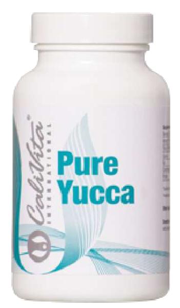 pure yucca oczyszczanie organizmu