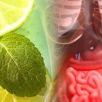 Detoksykacja organizmu – produkty, korzyści wskazówki